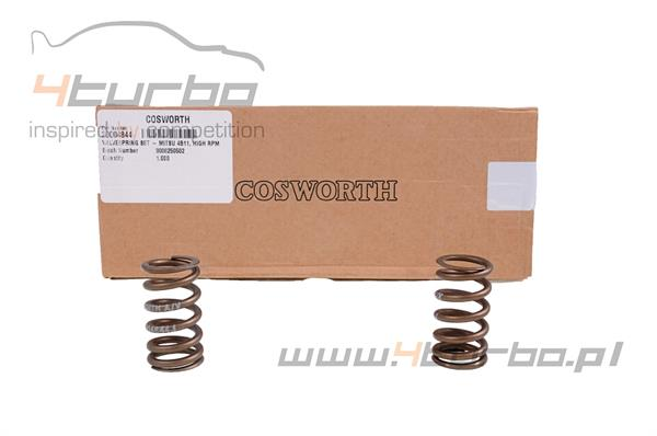 Cosworth High Performance Valve Spring Set Cosworth EVO 7/8/9 4G63 - 20000164